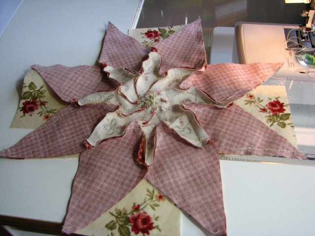 A Machine Pieced Star (12)