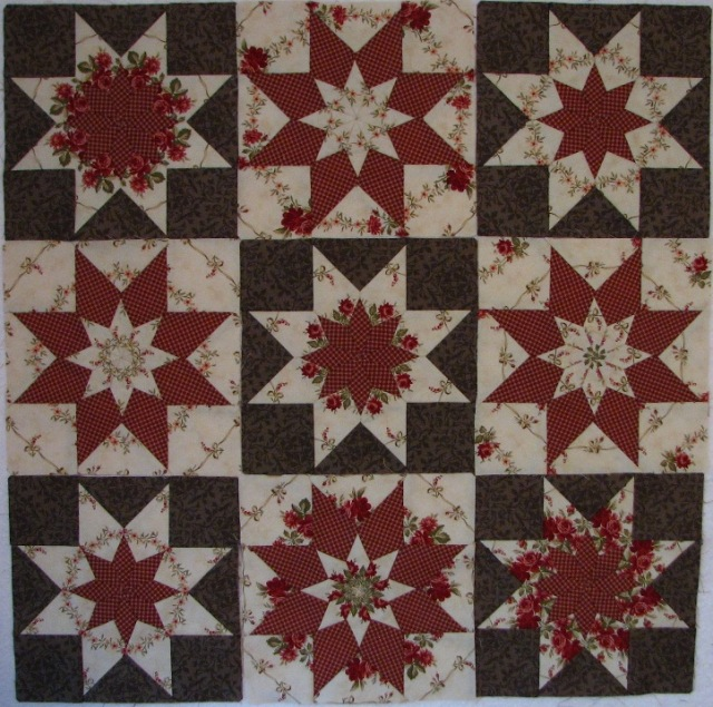 A Machine Pieced Star (14)