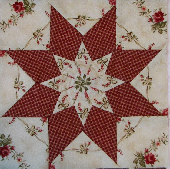 A Machine Pieced Star (15)